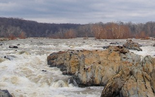 Wide=angle view of a very full Potomac river at Great Falls during winter. Bare trees are seen on both sides of the river.
