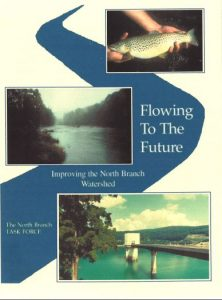 Cover page of Flowing to the Future Report on the North Branch
