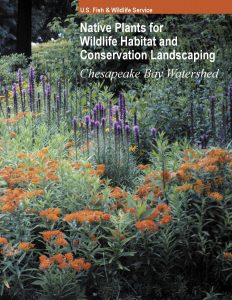 NativePlantsResource