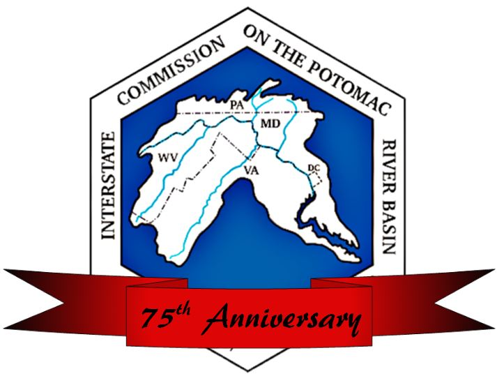 Logo with red 75th banner