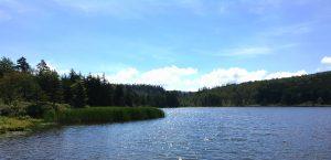 Potomac Headwaters