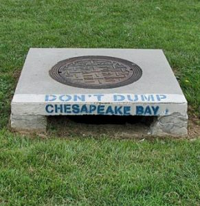 "Storm drain that has ""Chesapeake Bay"" written on it"