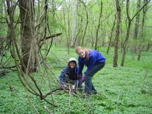 Two women pulling weeds in the forest.