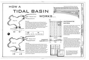 A diagram of the gates in the Potomac Tidal Basin, Washington, D.C.